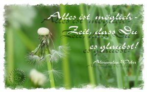 Read more about the article Alles ist möglich!