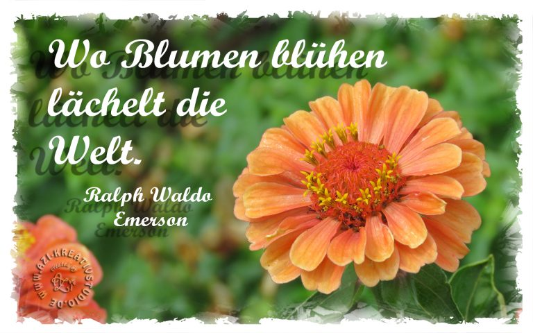 Wo Blumen blühen, lächelt die Welt!