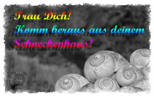 Read more about the article Trau Dich aus Deinem Schneckenhaus!