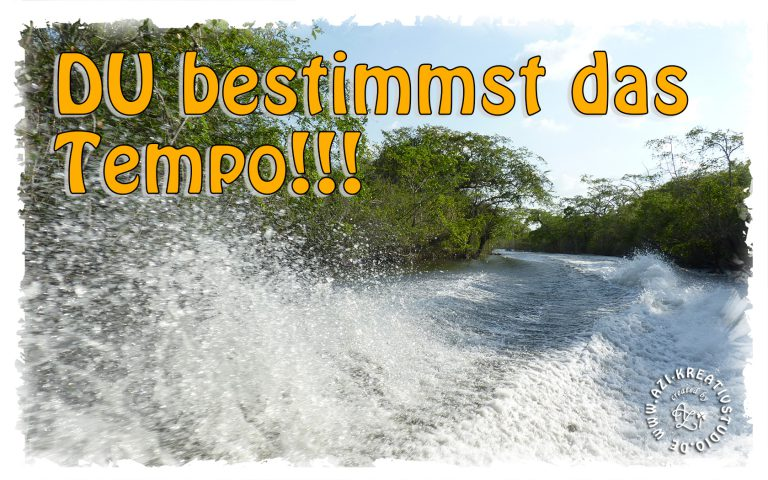 Read more about the article Du bestimmst das Tempo