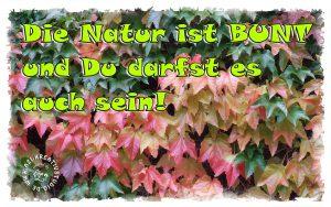 Die Natur ist bunt