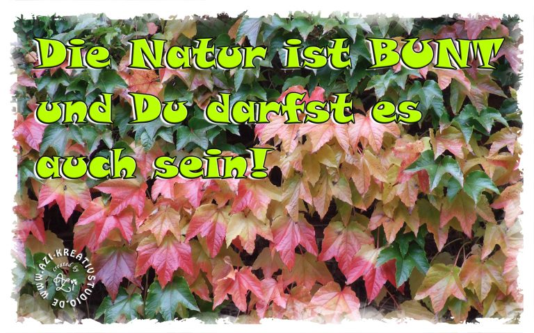 Read more about the article Die Natur ist bunt