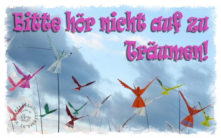 Read more about the article Hör nicht auf zu Träumen