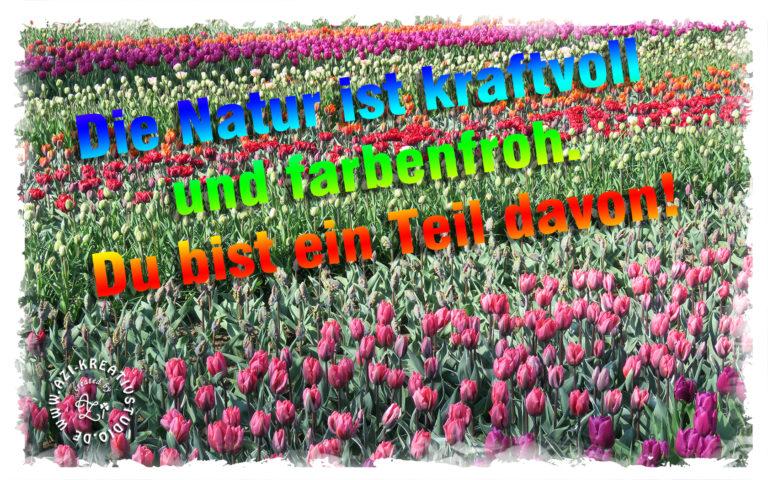 Read more about the article Vorfreude auf den Frühling