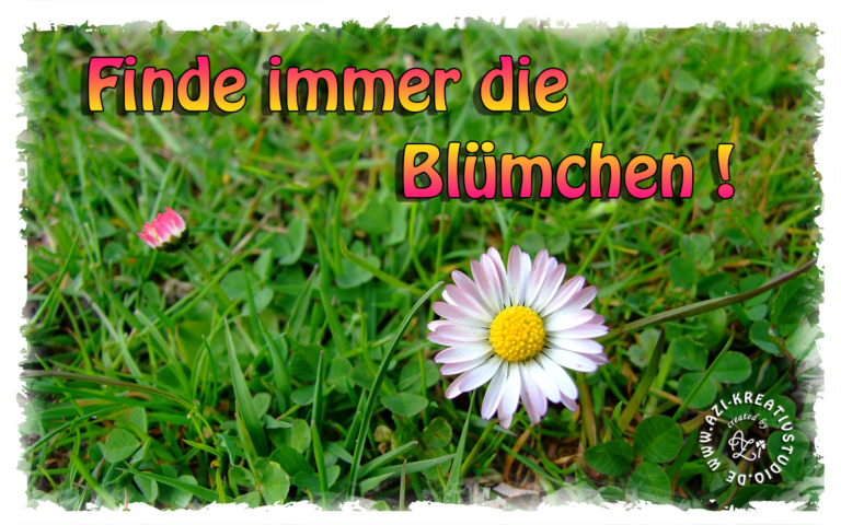 Read more about the article Finde immer die Blümchen!