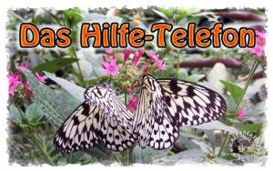 Read more about the article Das Hilfe-Telefon