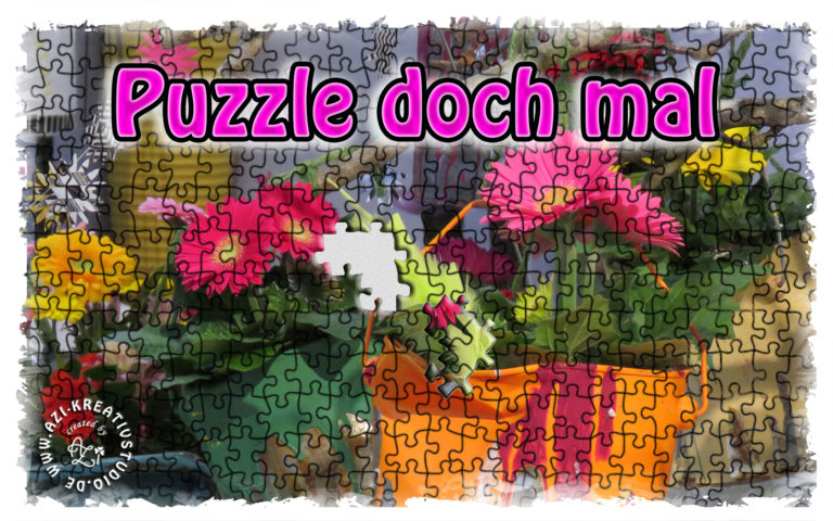 Read more about the article Entdecke Puzzeln