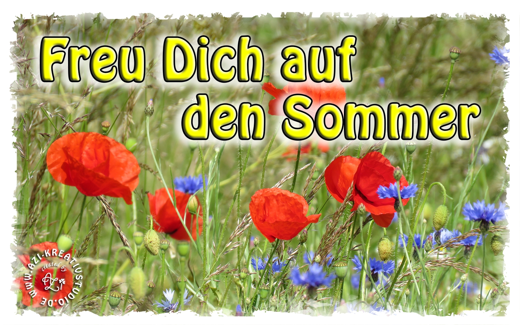 You are currently viewing Freu Dich auf den Sommer