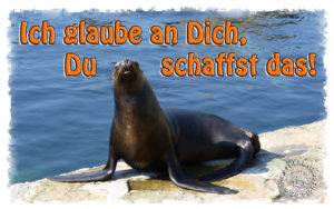 Read more about the article Ich glaube an Dich