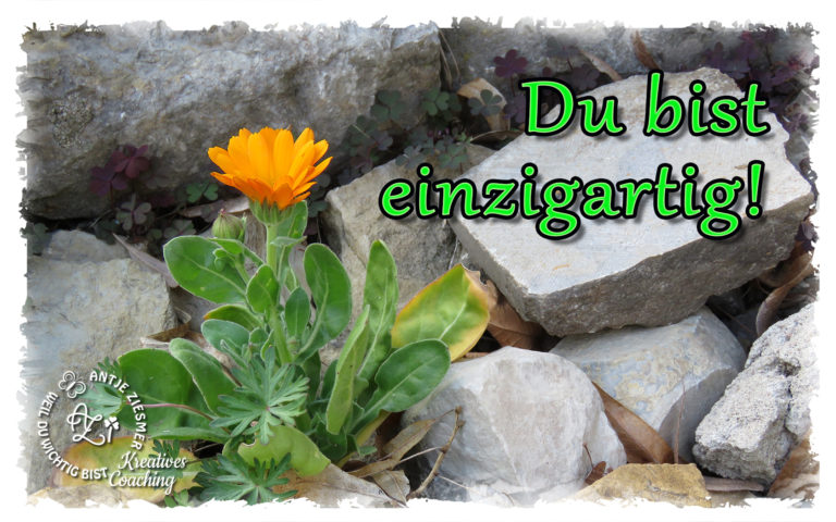 Read more about the article Du bist Einzigartig