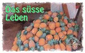 Read more about the article Das süße Leben