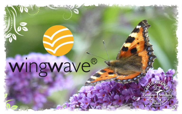 Read more about the article Wingwave – Coaching